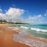 熱帯島のエキゾチックなビーチ — ストック写真