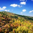 Colorful Autumn mountain - Stockfoto