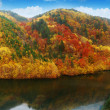 Autumn Lake - Stockfoto
