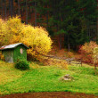 Small house in the forest - Lizenzfreies Foto