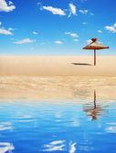 Tropiska parasoll — Stockfoto