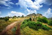 Route vers le sommet de la montagne — Photo