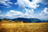 Na vrcholu hory — Stock fotografie