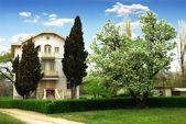 семейный дом и дерево — Стоковое фото