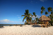 Exotische strand in Dominicaanse Republiek — Stockfoto