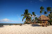 Playa exótica en república dominicana — Foto de Stock