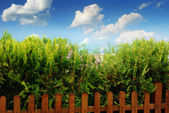 Clouds, fence and blue sky — Stock Photo