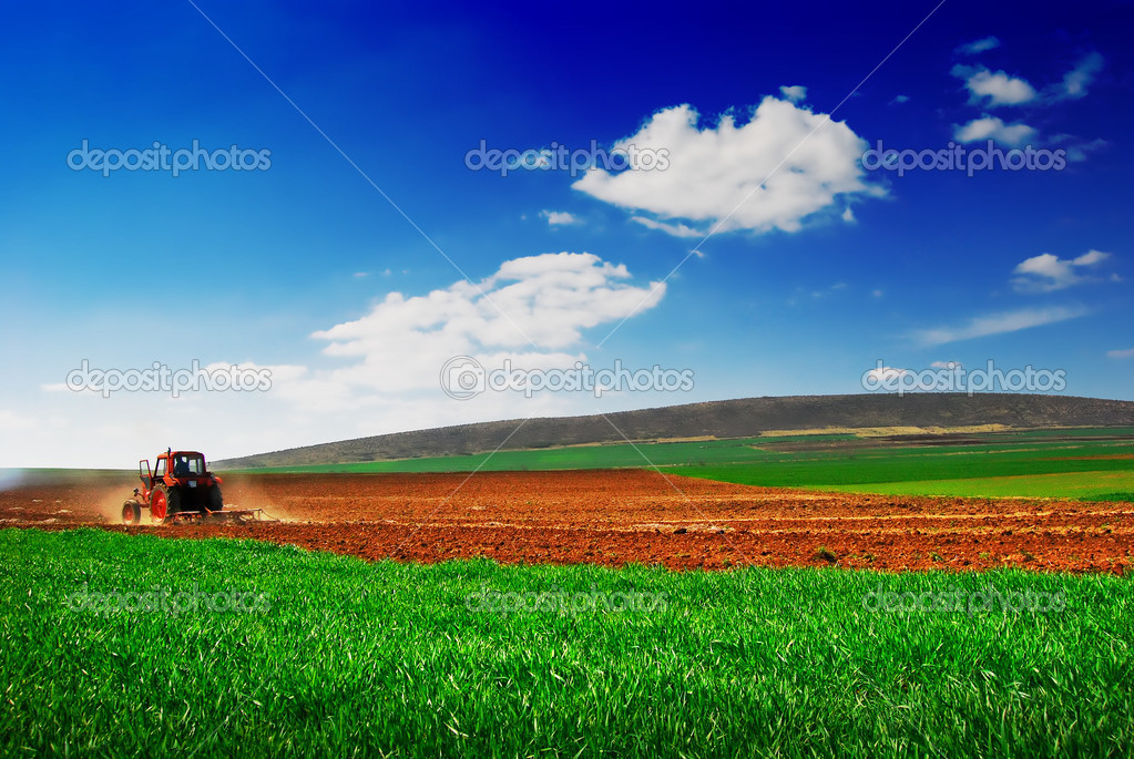 Cultivating tractor in the field — Stock Photo #2075355