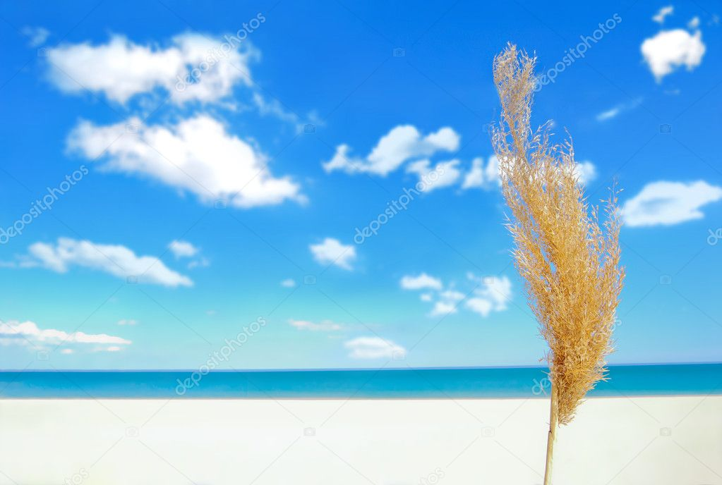 Sands, beach, ocean and clouds  Stock Photo #2075768
