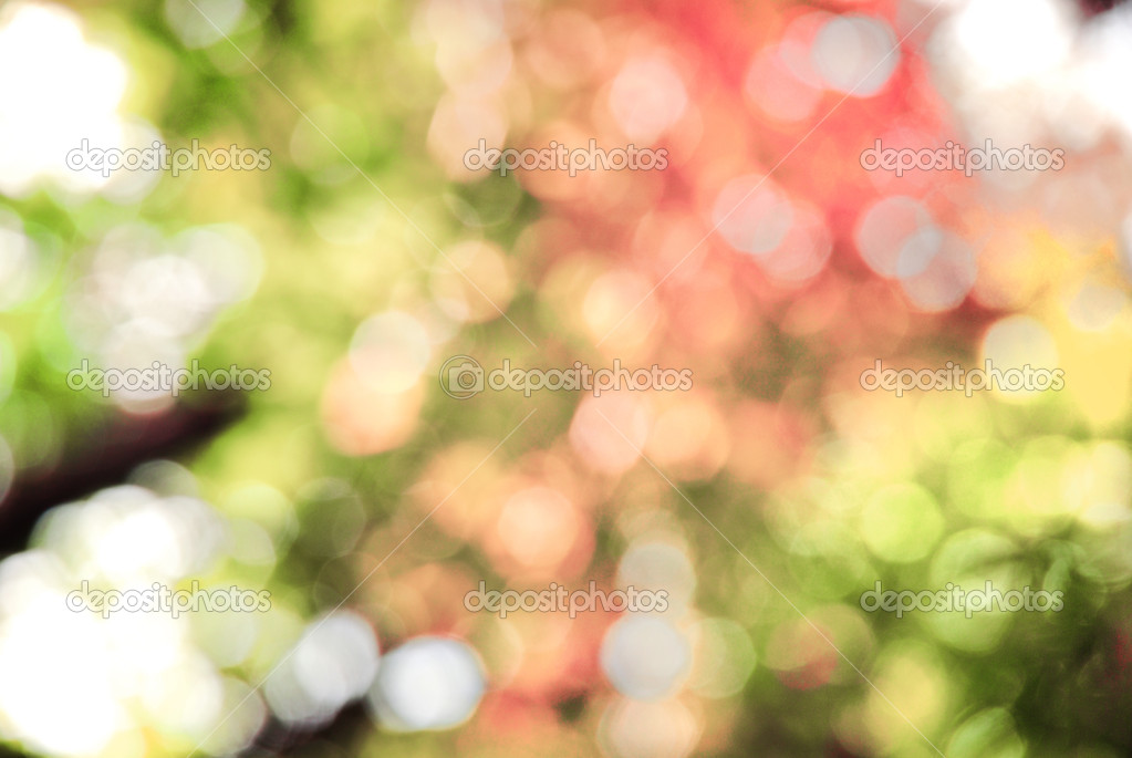 Colorful bokeh — Stock Photo #2077018