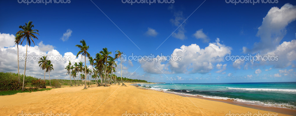 Tropical exotic beach, Punta cana — Stock Photo #2078719