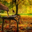 Bench in a park - Foto Stock