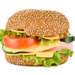 Royalty-Free Stock Photo: Tasty Hamburger