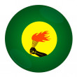 Zaire button with flag — Stock Photo #2106046