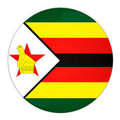Zimbabwe button with flag — Stock Photo