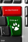 Concepto de teclado de computadora — Foto de Stock