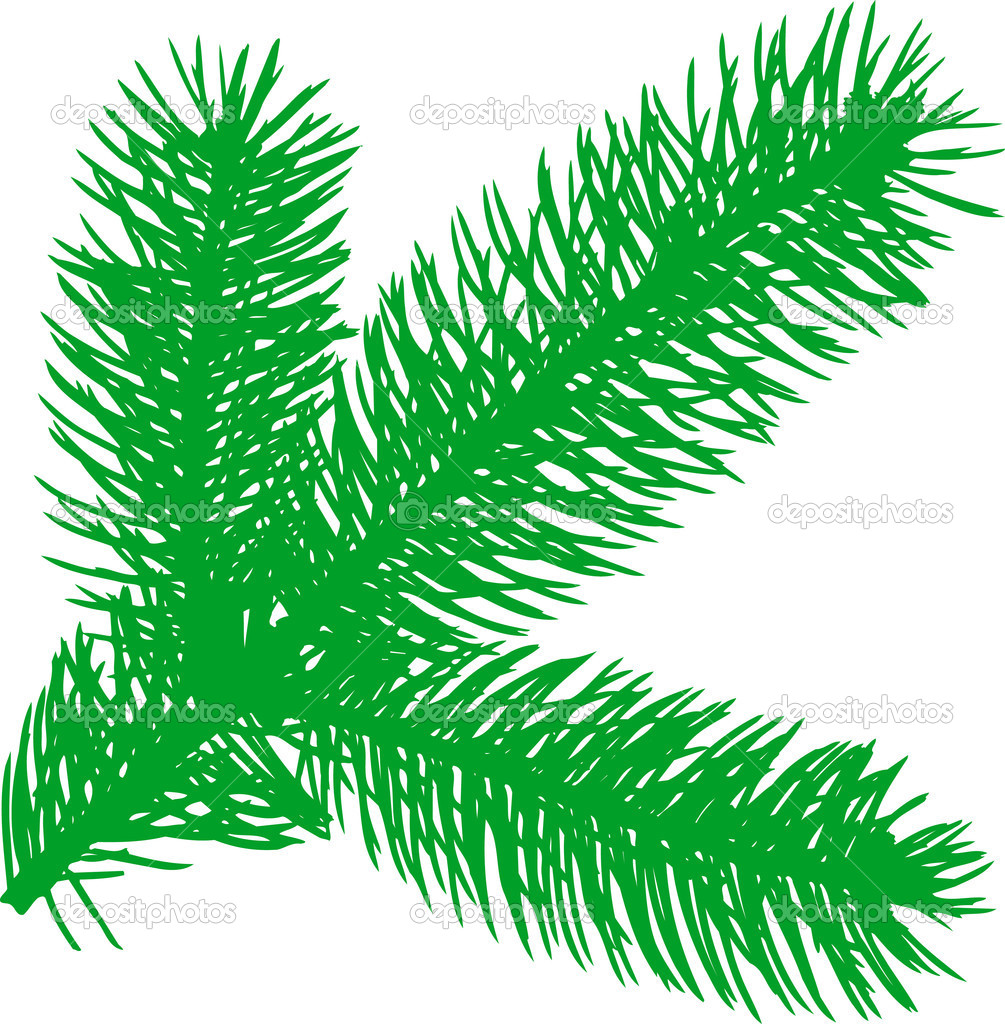 Vector illustration: Firtree green element   Stock Vector #2123102