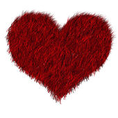 Red furred heart — Stockfoto