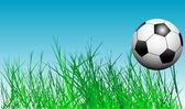 Voetbal in het gras — Stockvector