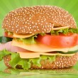 Tasty Burger — Stock Photo #2155844