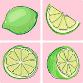 Icon set - lime fruit — Vector de stock