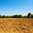 Stock Photo: Fertile soil