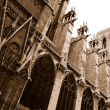 Notre Dame Cathedral side view in sepia — Stock Photo