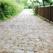Medieval cobblestone footpath in Saint D — Stock Photo