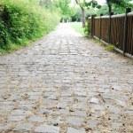 Medieval cobblestone footpath in Saint D — Stock Photo