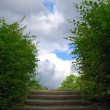 Royalty-Free Stock Photo: Stairway to heaven