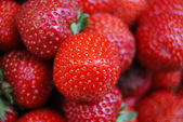 Ripe strawberrys close up — Stock Photo