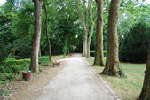 Empty footpath in Saint Denis park — Stock Photo