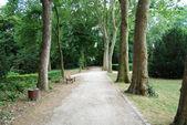 Empty footpath in Saint Denis park — Stock Photo