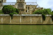 Bank of Seine river and Notre Dame Cathe — Стоковое фото