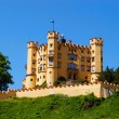 Stock Photo: Fort near Neuschwanstein castle