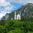 Stock Photo: Castle Neuschwanstein in Alps