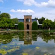 Tranquil pond in Stuttgart zoo — Stock Photo