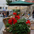 Red flowers and street cafe - Stock Photo