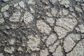 Wet cracked asphalt surface — Stock Photo