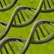 DNA — Stock Photo #2091317