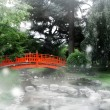 Stock Photo: Red bridge in a japanese garden