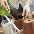 Potting — Stock Photo
