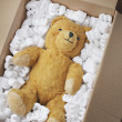Stock Photo: Teddy bear transport
