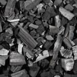 odun kömürü — Stok fotoğraf