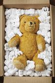 Transporte de urso de pelúcia — Foto Stock