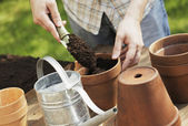 Potting — Stockfoto