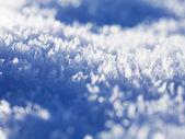 Frost — Stockfoto