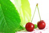 červené třešně — Stock fotografie