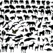 Royalty-Free Stock Vector Image: Animal of africa