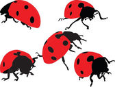Ladybird silhouette collection — Stock Vector